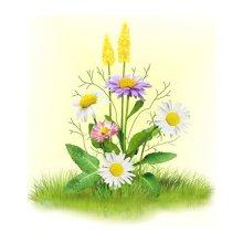 7025 Набор для вышивания лентами 'Матренин Посад' 'Ромашки с цветочками', 16х18 см