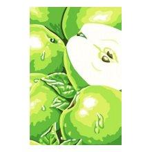 C066 Набор для раскрашивания по номерам 'Зеленые яблоки', 20х30 см