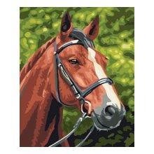 EX5076 Набор для раскрашивания по номерам 'Лошадь', 30x40 см