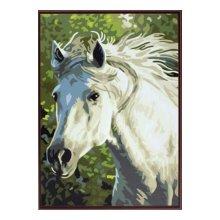 EX5077 Набор для раскрашивания по номерам 'Белый конь', 30x40 см