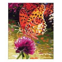 EX5081 Набор для раскрашивания по номерам 'Желтая бабочка', 30x40 см