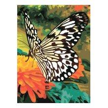 EX5082 Набор для раскрашивания по номерам 'Белая бабочка', 30x40 см
