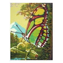 EX5083 Набор для раскрашивания по номерам 'Зеленая бабочка', 30x40 см